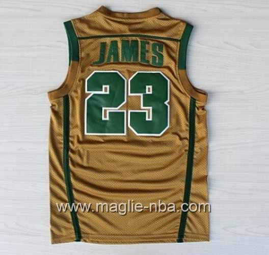 Maglia basket NCAA Irish LeBron James #23 marrone