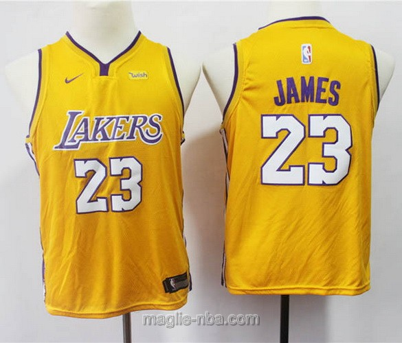 Maglie nba bambino Nike Los Angeles Lakers LeBron James #23 giallo